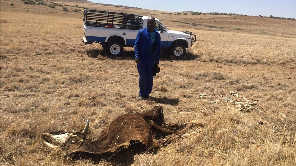 Farmer Thuso Kalane