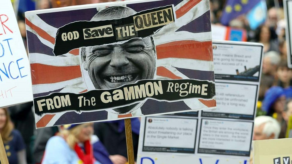 "A placard using the term ""gammon"" during an anti-Brexit protest"