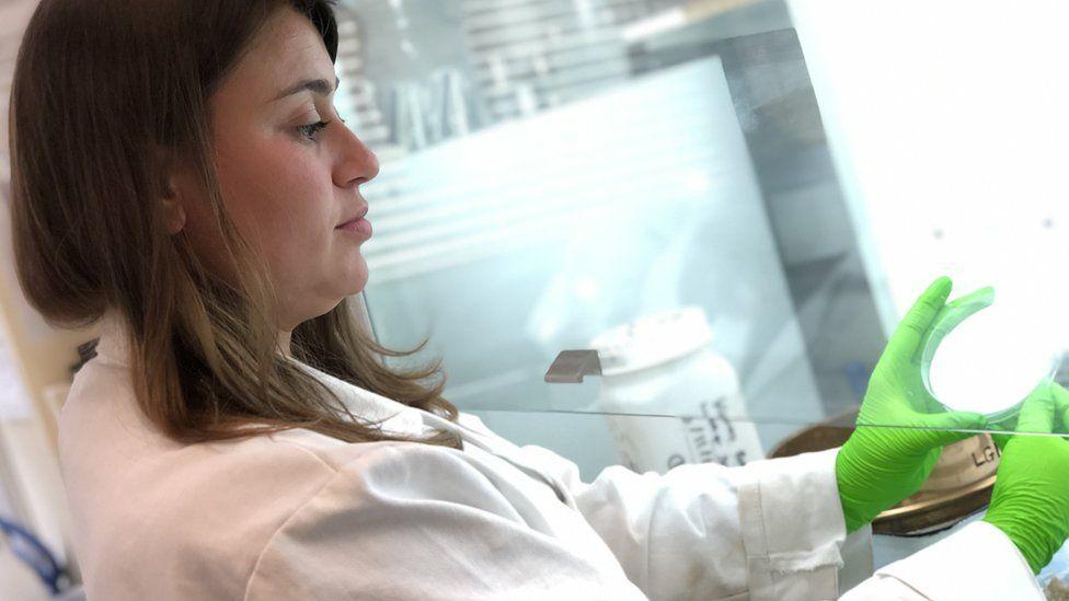Daniella Hodgson in the lab at Royal Holloway, University of London