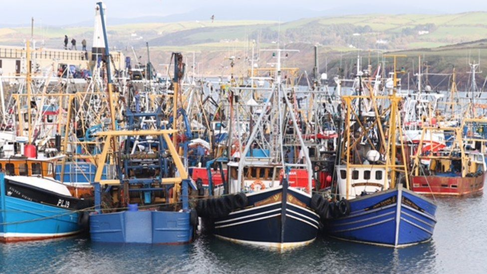 King Scallop Boats, Peel Harbour