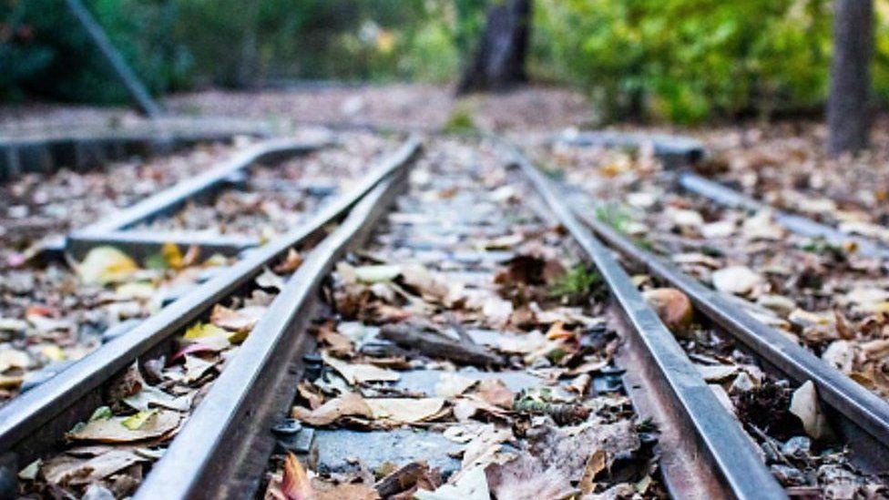 Leaves on railway line