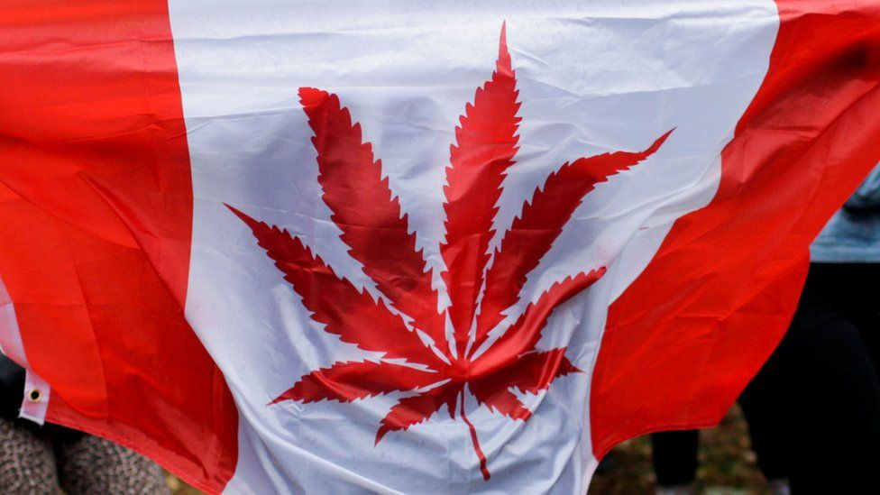 A Canada flag with a marijuana leaf on it
