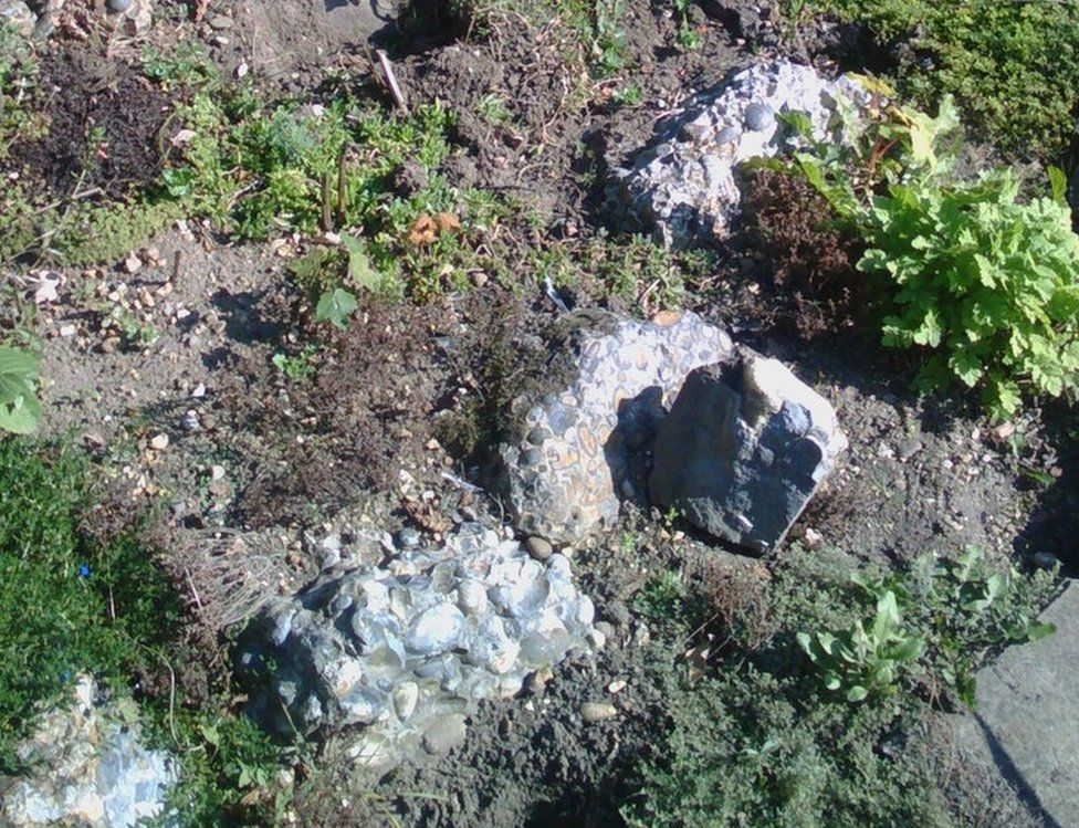 Hertfordshire puddingstone