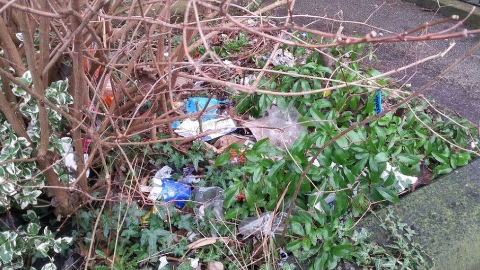 Rubbish in hedgerow