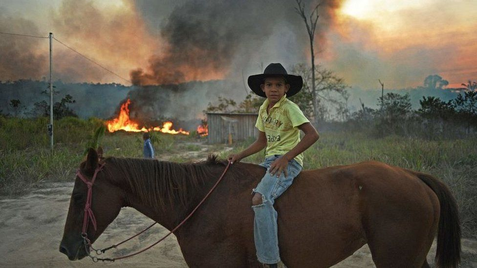 Boy on horse in Para state, Brazil