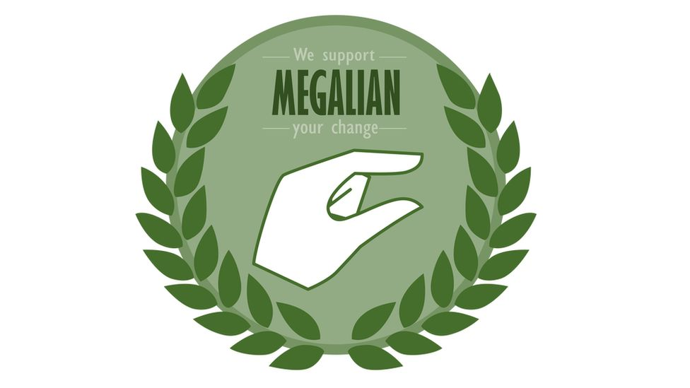 Print screen from Megalia website