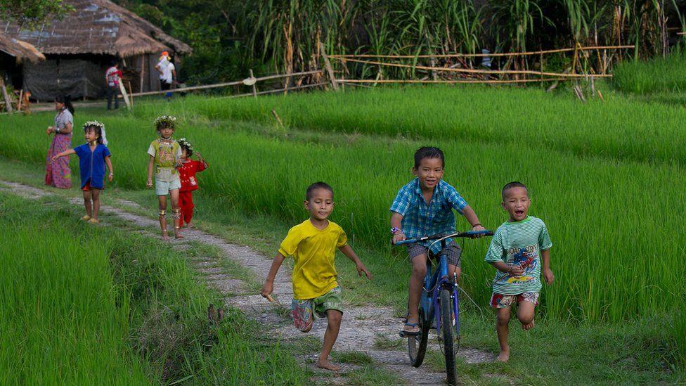 Thai children in a rice field