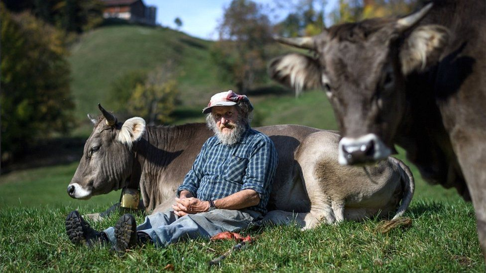 Swiss farmer Armin Capaul poses with one of his cows ahead of the nationwide vote on his initiative on cow horns, near Perrefitte, northern Switzerland