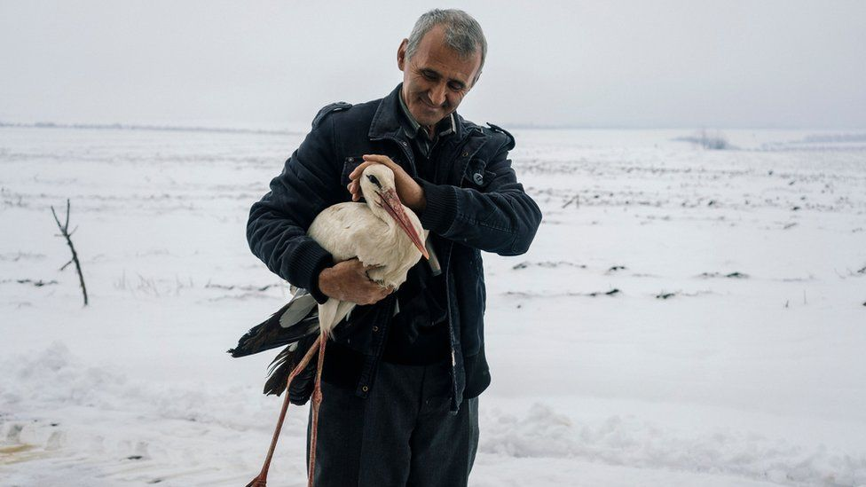 Bulgarian farmer Safet Ismail, 53, holds a stork that he saved in the village of Zaritsa, Bulgaria, March 21, 2018.