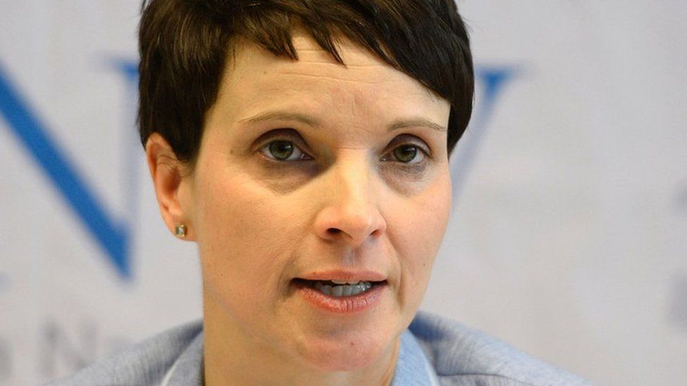Frauke Petry, 21 Jan 17 pic
