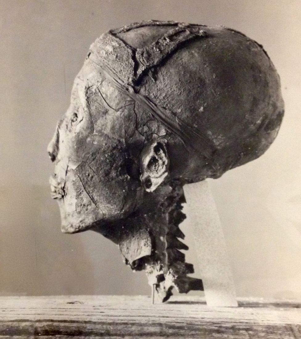 Profile photograph of King Tutankhamun's head
