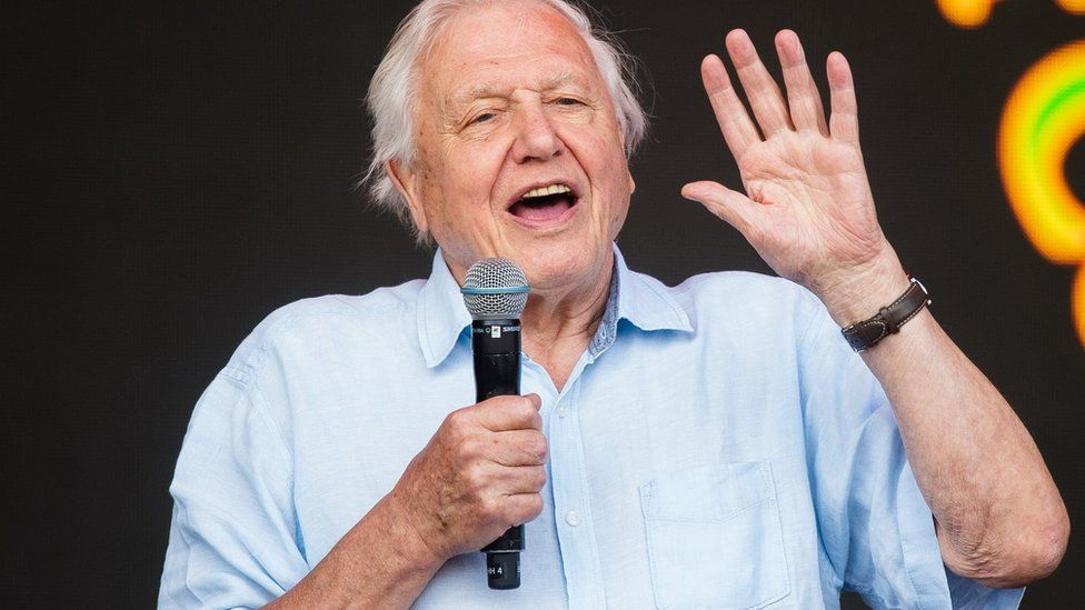 David Attenborough to front BBC's Extinction: The Facts