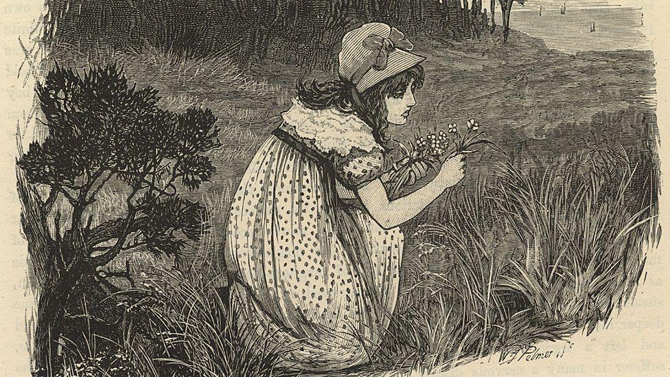 """Mary Somerville, la genio autodidacta que fue declarada """"la reina de la ciencia"""" y luego cayó en el olvido"""