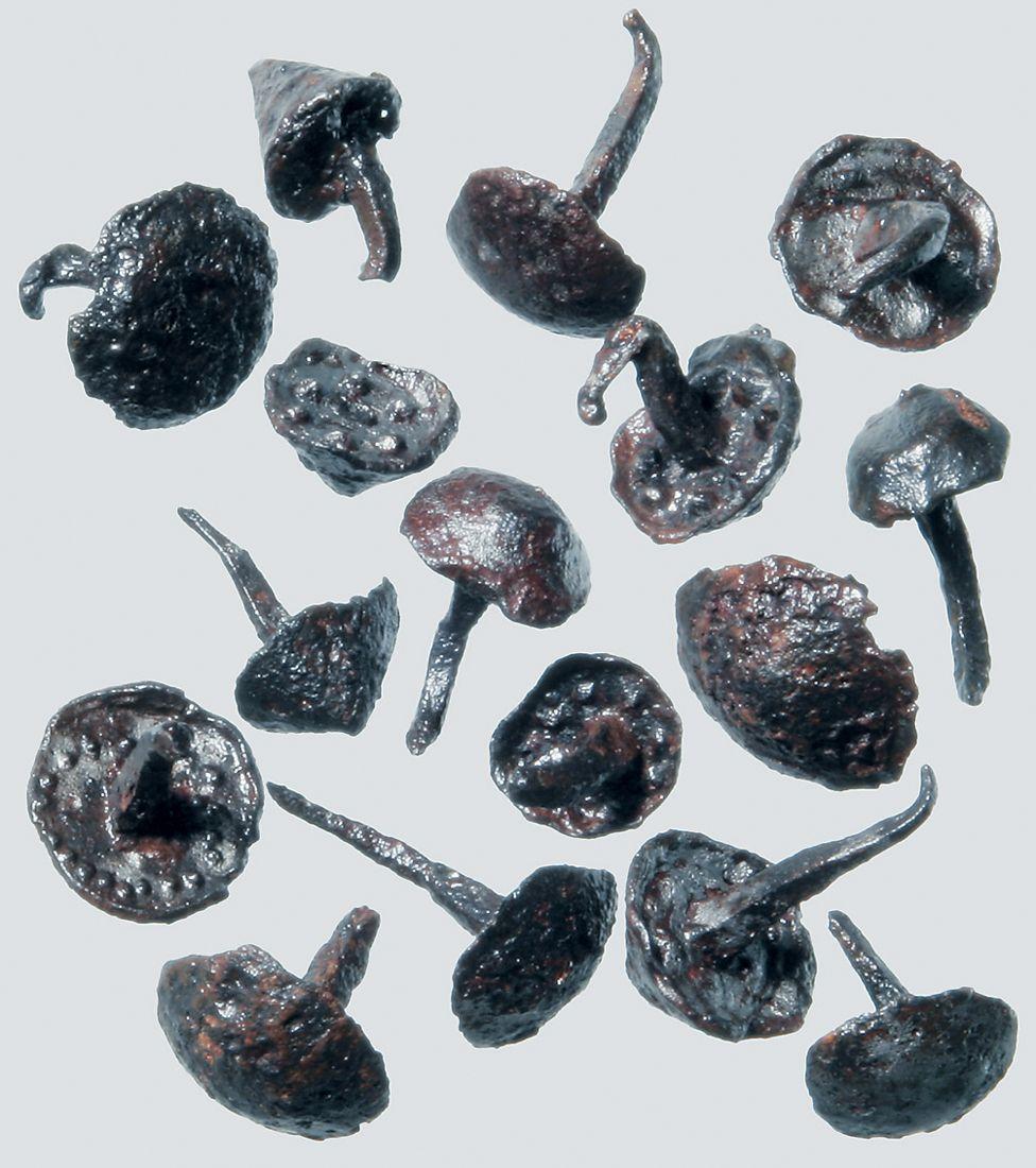Roman shoe nails