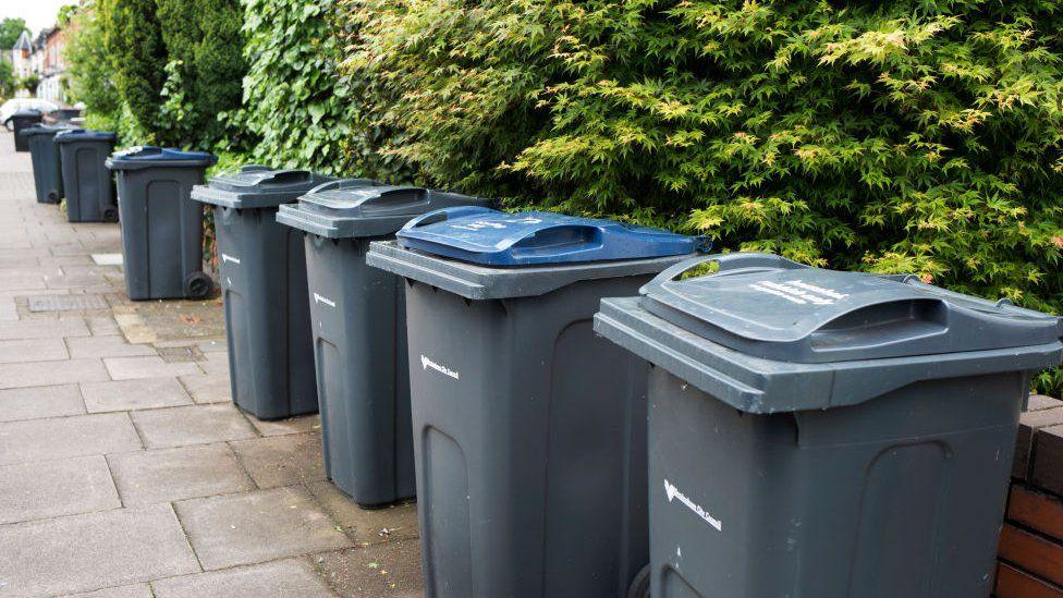 Wheelie bins in Birmingham