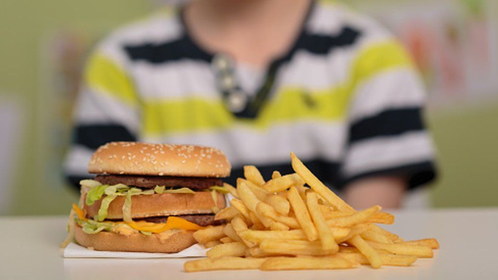 Child eating burger and fries