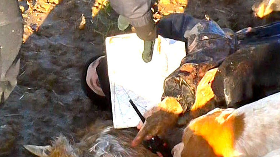 Police probe after claim fox killed during Quorn Hunt