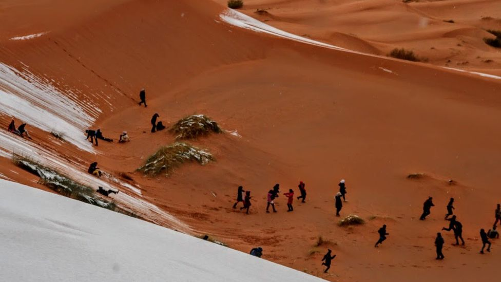 Personas se deslizan en la nieve en el desierto del Sahara. (Foto: gentileza Hamouda Ben jerad)