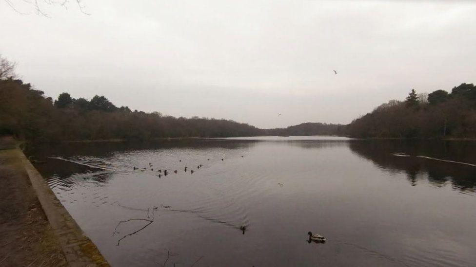 Sutton Park, Sutton Coldfield