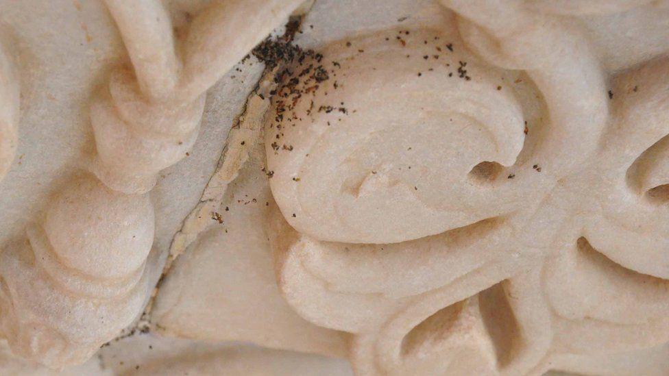 Close up of insect mess at the Taj Mahal