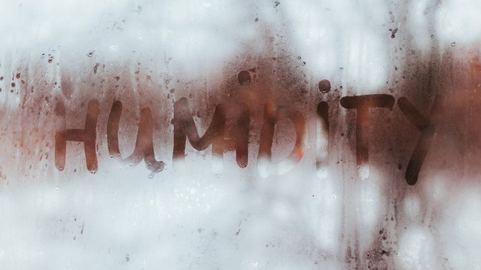 Condensation on a window