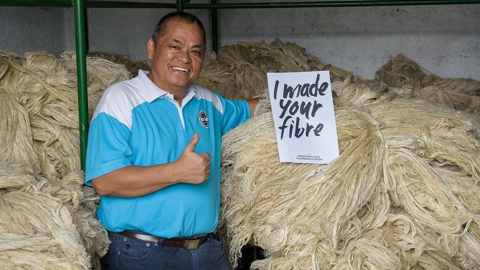 Fibres made from pineapple leaves