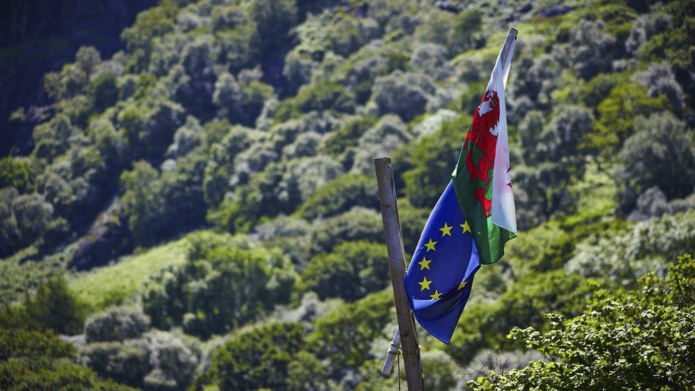 Baner yr UE a Chymru // The EU and Welsh flags fly together