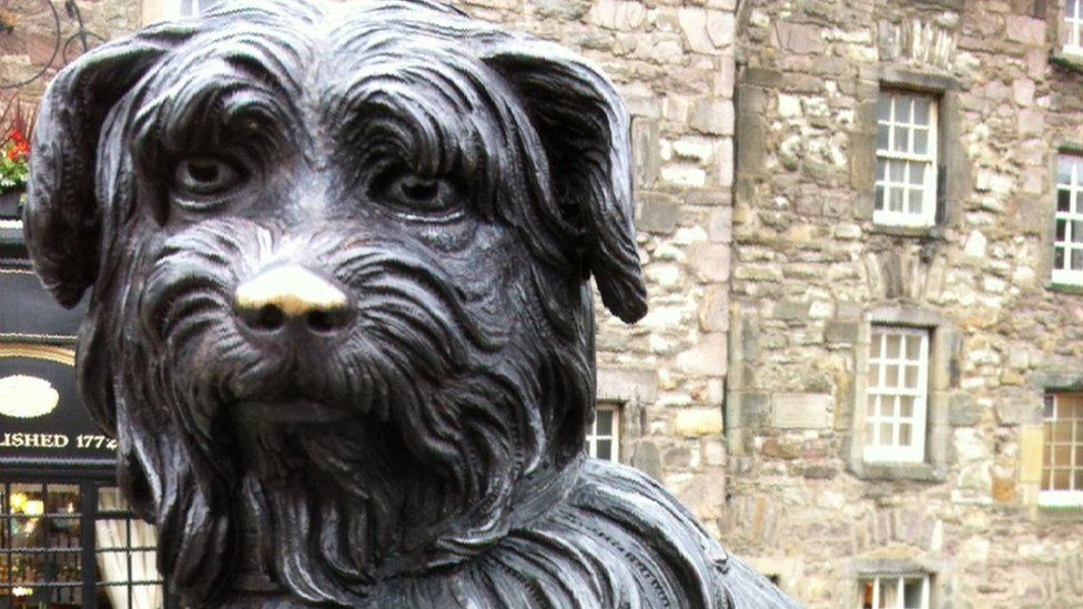 Greyfriar's Bobby's shiny nose