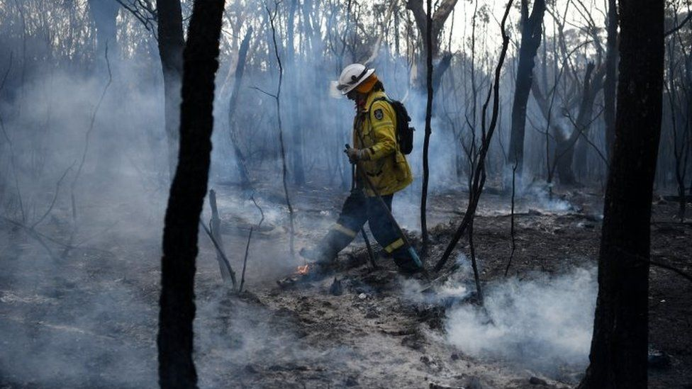 A firefighter tackles bushfire in Sydney's northern suburb of South Turramurra. Photo: 12 November 2019