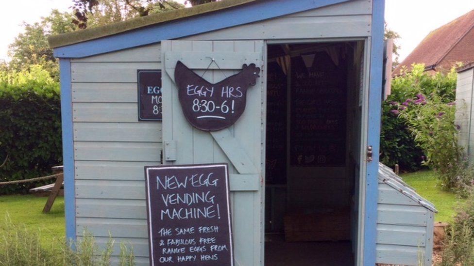 Egg shed.