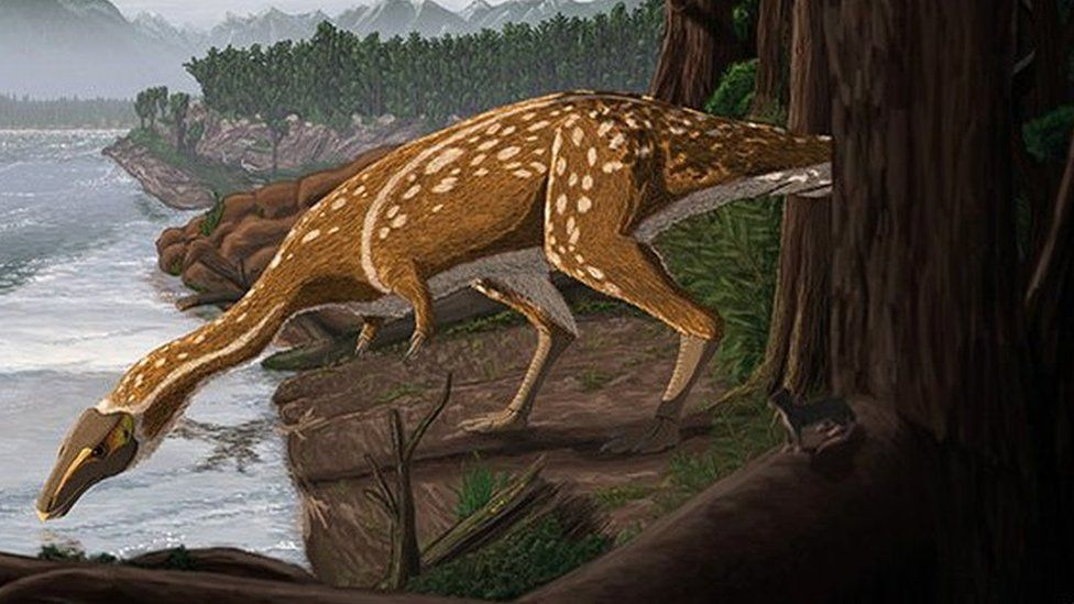 An artist's interpretation of what the elaphrosaur would have looked like