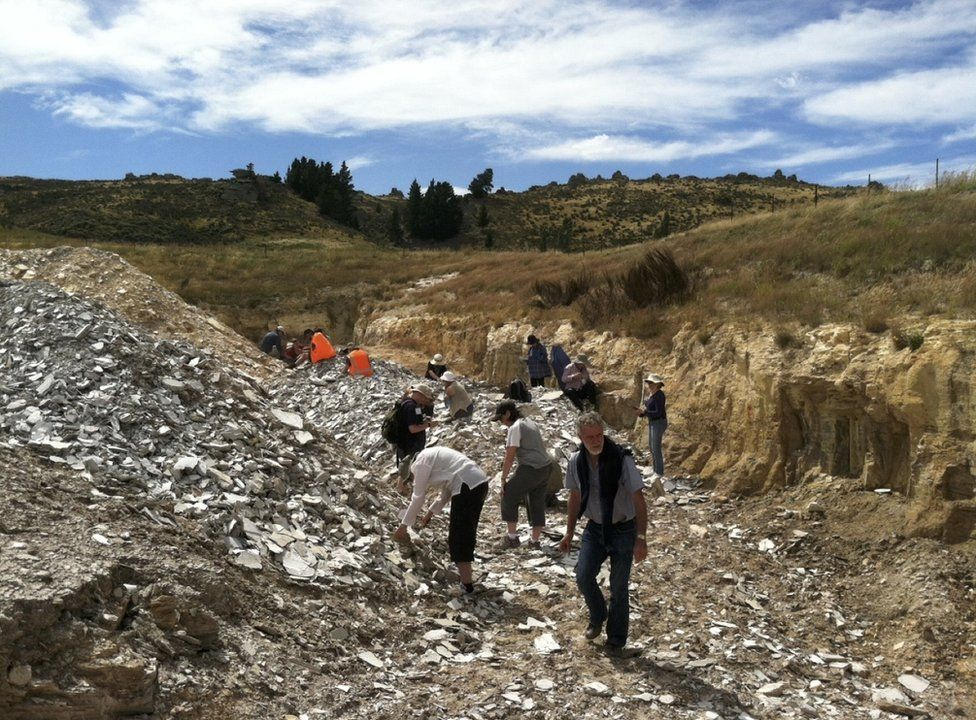 Scientists surveying Foulden Maar for fossils