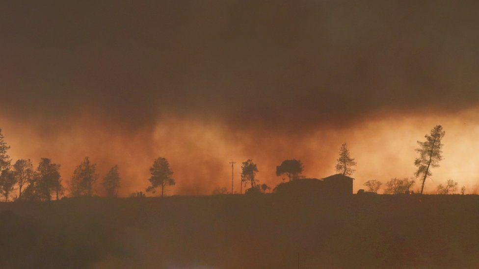 A dozer operator cuts a fire break west of Paradise, Calif., as the Camp Fire burns, Thursday, November 8, 2018
