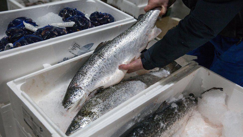 Glasgow fish market