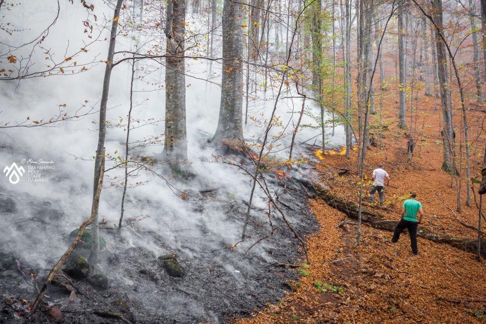 стара планина пожар