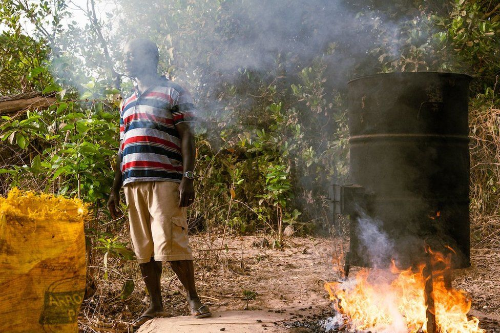 Kumus Da Silva (fight), inspects the fire cooking of cashews near his home just outside the capital. Da Silva supports his family with the cashews and cashew juice he sells domestically.