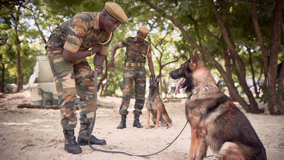 Ernest Taylor (center), of Africa Guard (South Africa dog training company), during a training session for sniffer dogs and their handlers at the Kenya Wildlife Service (Marine Park) offices. Mombasa sea port, Kenya.