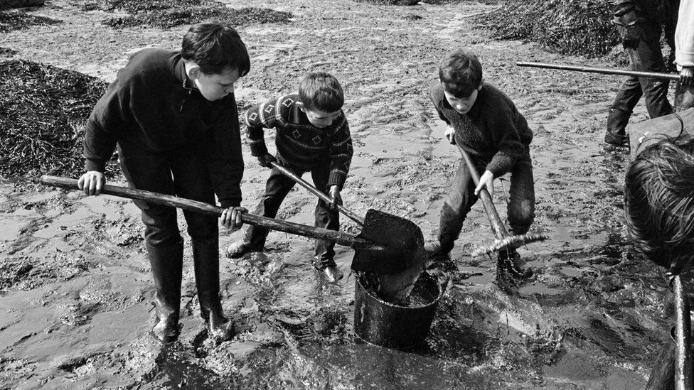 Children scooping up oil on the beach in Perros-Guirec, Brittany
