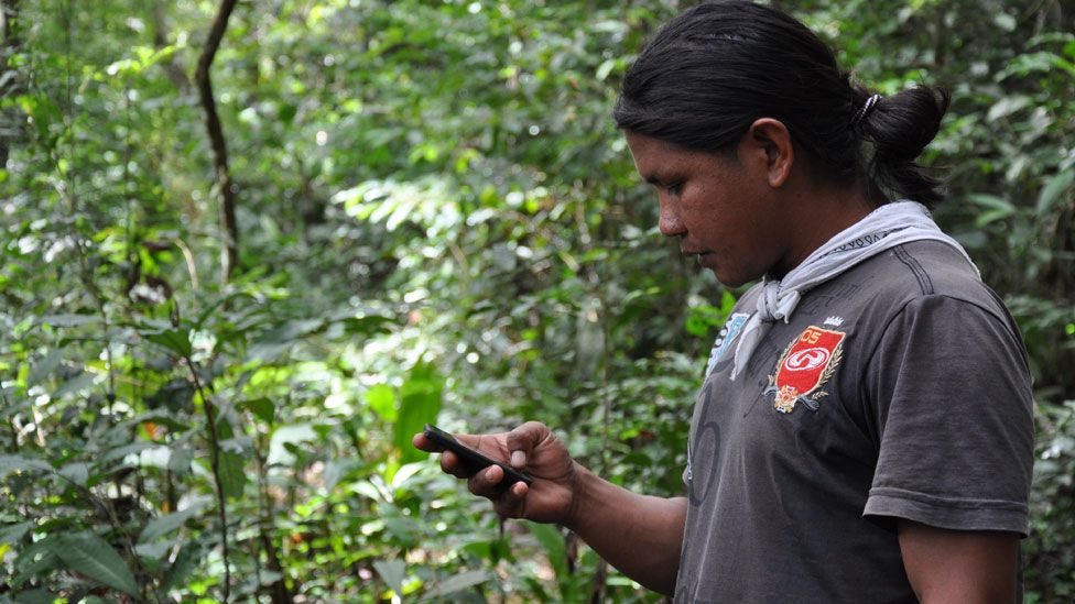 Smart phones being used to monitor the forest