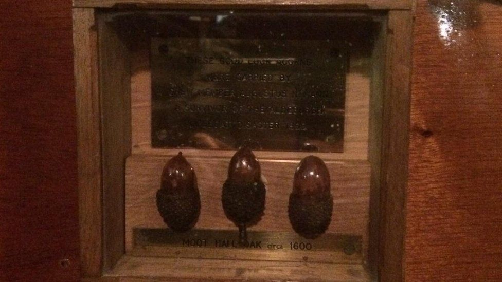 Augustus Mann's acorns in the current Aldeburgh lifeboat