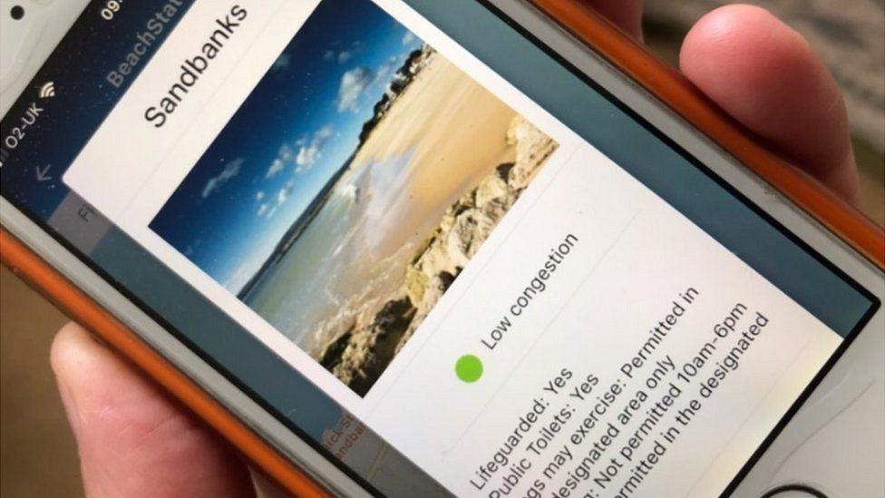BCP Beach Check app