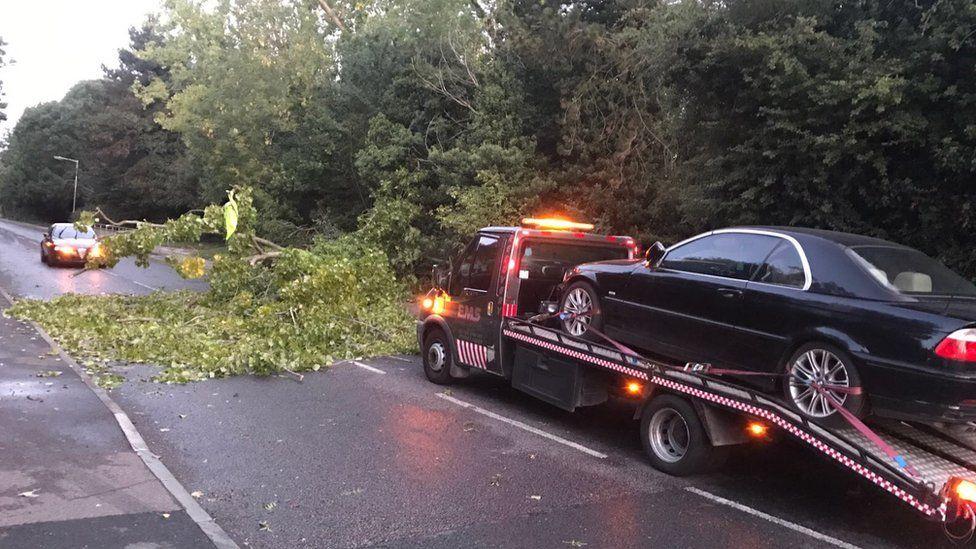 Fallen tree blocks road in Basildon, Essex