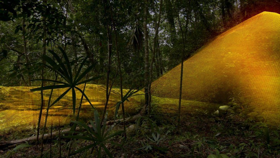 An image of jungle foliage superimposed with a Lidar image of the same location, revealing a mound in the distance is in fact a pyramid.