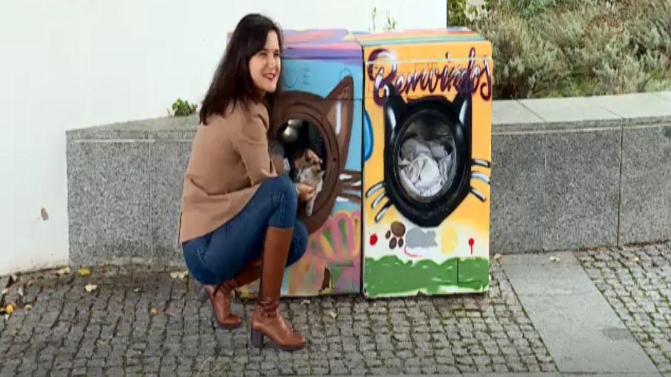 Washing-machine cat shelters, Monchique, Portugal, 2018