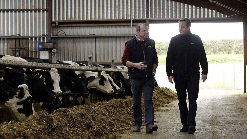 David Cameron in Ahoghill