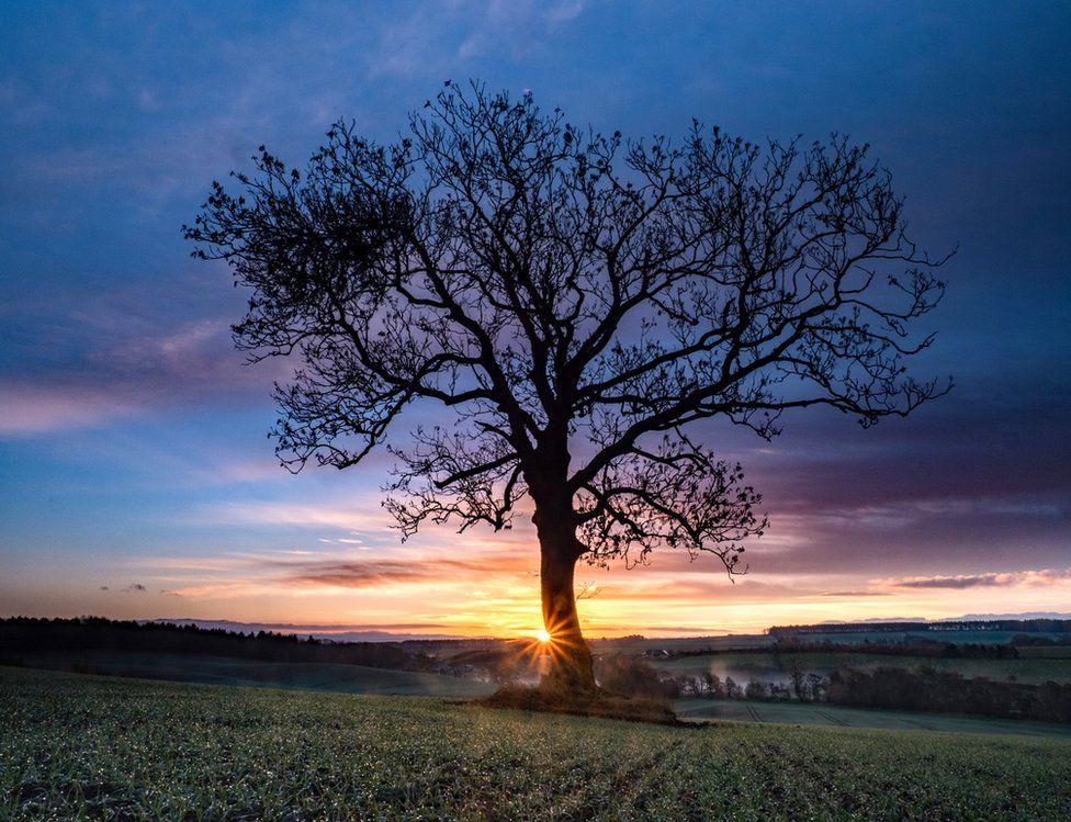 Sunrise Lilliesleaf
