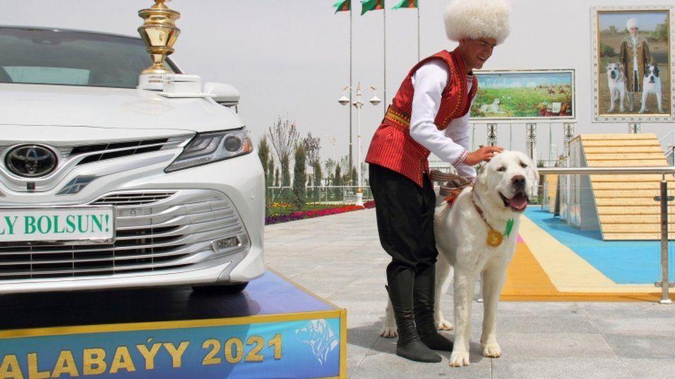 A handler pets a Turkmen shepherd dog