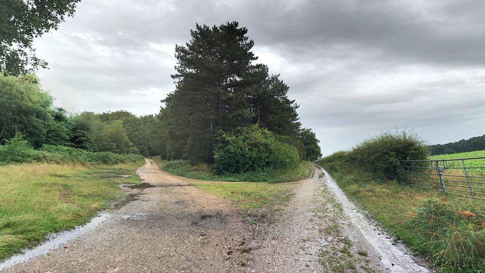 Clipstone Drive