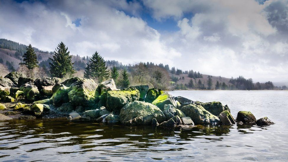 Stones on the Oregon coast