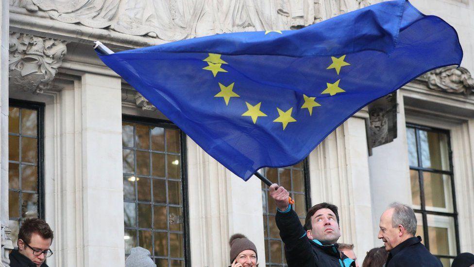 Pro-EU demonstrator outside the Supreme Court on 24 January 2017